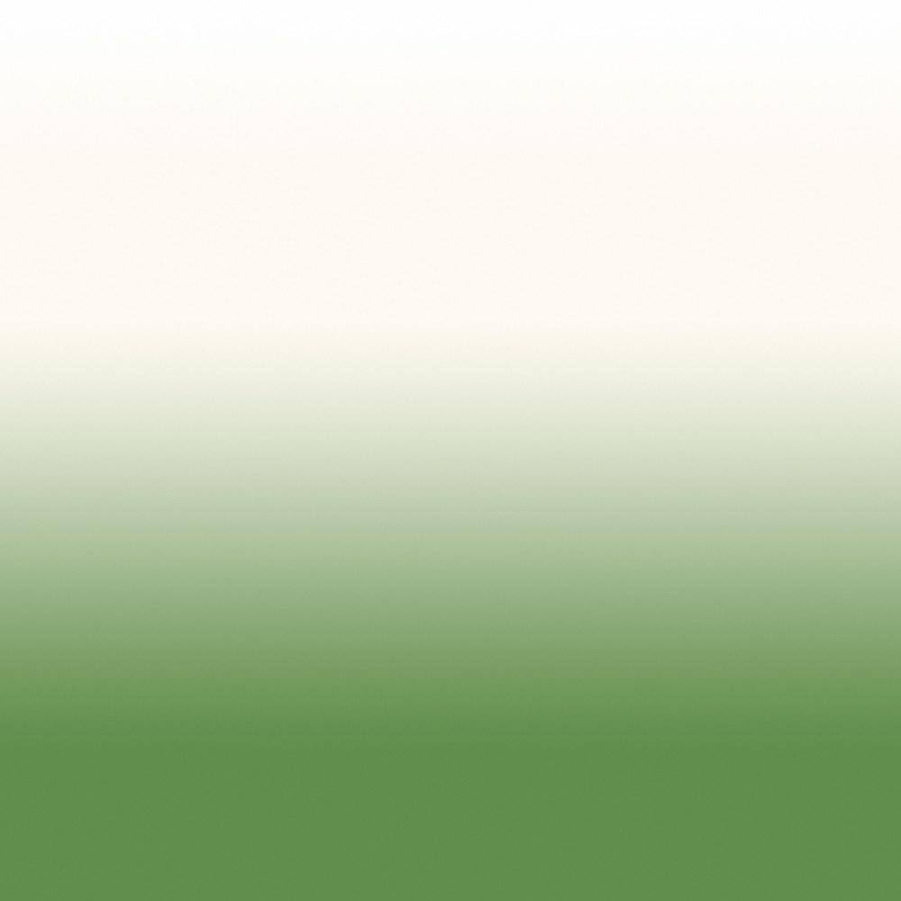 Papel De Parede Degradê Verde 129 Branco.